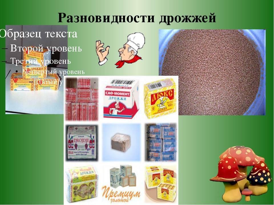 Дрожжи + продукты богатые дрожжами