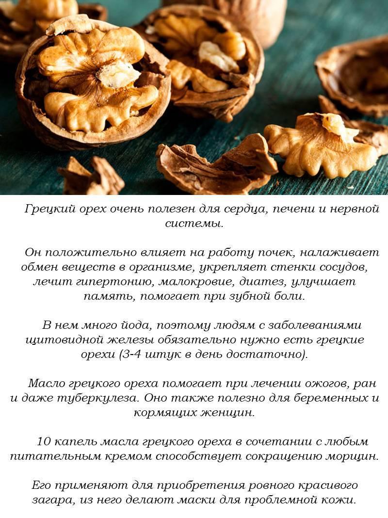 Орехи для потенции - самые полезные для мужчин, суточная норма и рецепты приготовления с медом