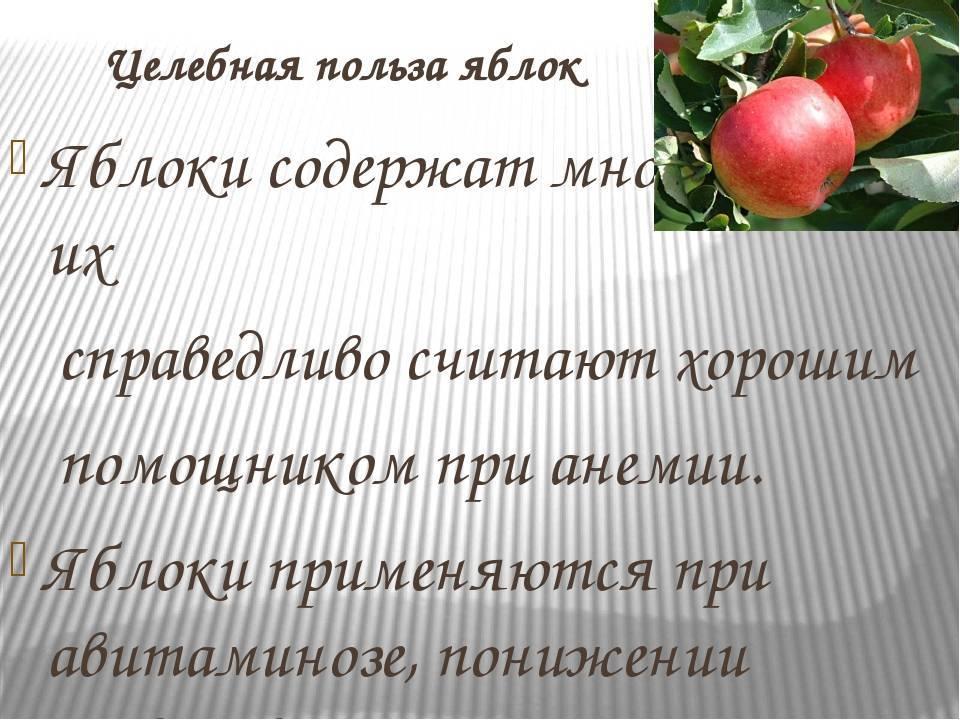 Семечки яблок: польза и вред