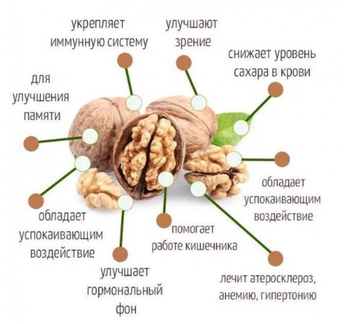 Как улучшить работу мозга и развить память?