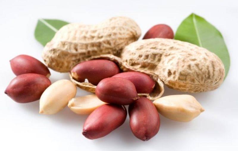 Орехи при диабете: их польза, вред и употребление при болезни