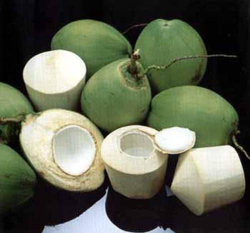 Мякоть кокоса: состав в виде бжу и калорийность, польза и вред, что с ней делать и как ее использовать, а также как хранить и можно ли ее есть?