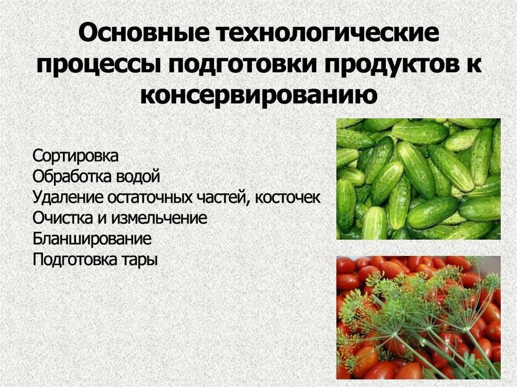 Консервные предприятия. сбор плодов и овощей