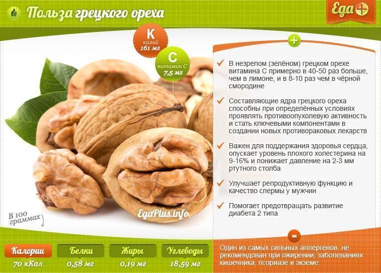 Скорлупа грецкого ореха: полезные и лечебные свойства, вред и противопоказания для организма человека, применение и из чего состоит, в чем польза отвара на воде?