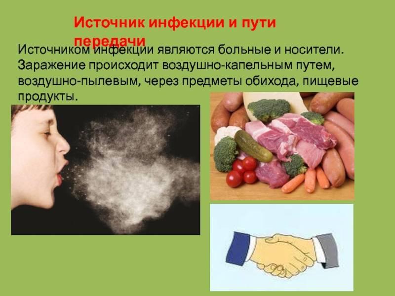 Пищевые продукты как источник вирусных инфекций