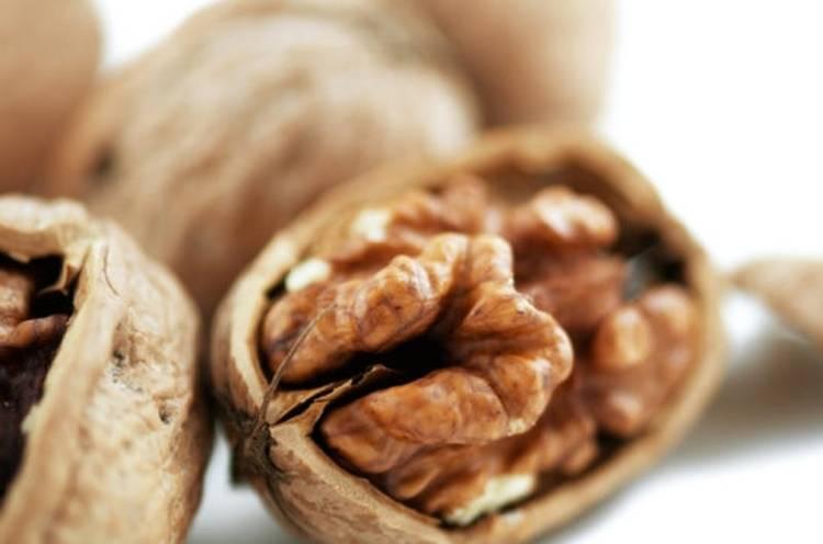 10 самых известных разновидностей орехов и их польза для организма женщины, а также возможный вред