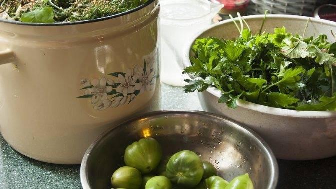 Соленые целые зеленые помидоры на зиму рецепты