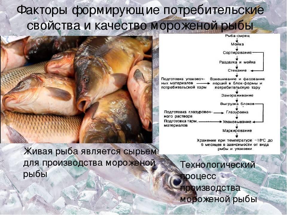 §  8. замораживание водного сырья - сафронова т.м. и др. технология комплексной переработки гидробионтов - n12.doc