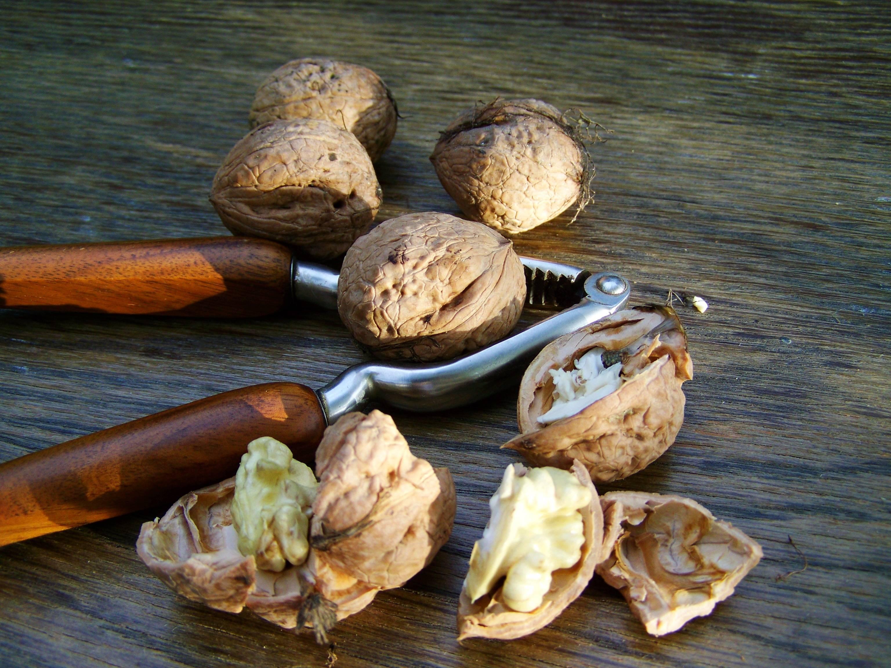 Почему орехи нужно есть каждый день: новое открытие ученых