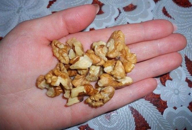 Сколько нужно есть орехов в день для набора мышечной массы