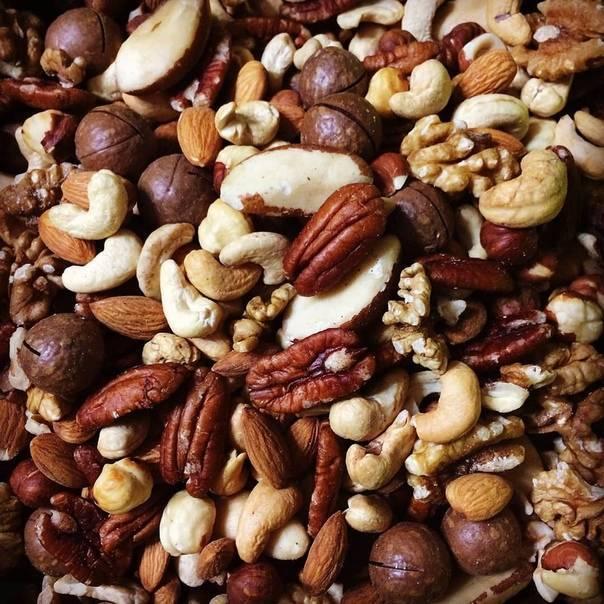 Можно ли собакам орехи фундук. орехи собакам: вред и польза. каким особям противопоказаны орехи - новая медицина