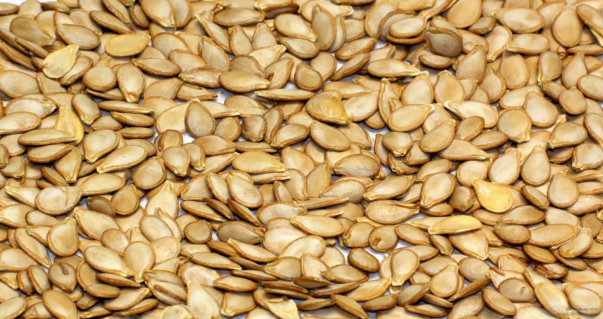 Польза и вред кабачков для организма: сока и семечек