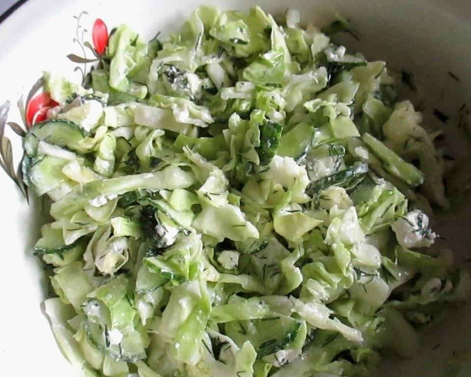 Салаты из капусты с огурцом — пять лучших рецептов. как правильно и вкусно приготовить салаты с капустой с огурцами.