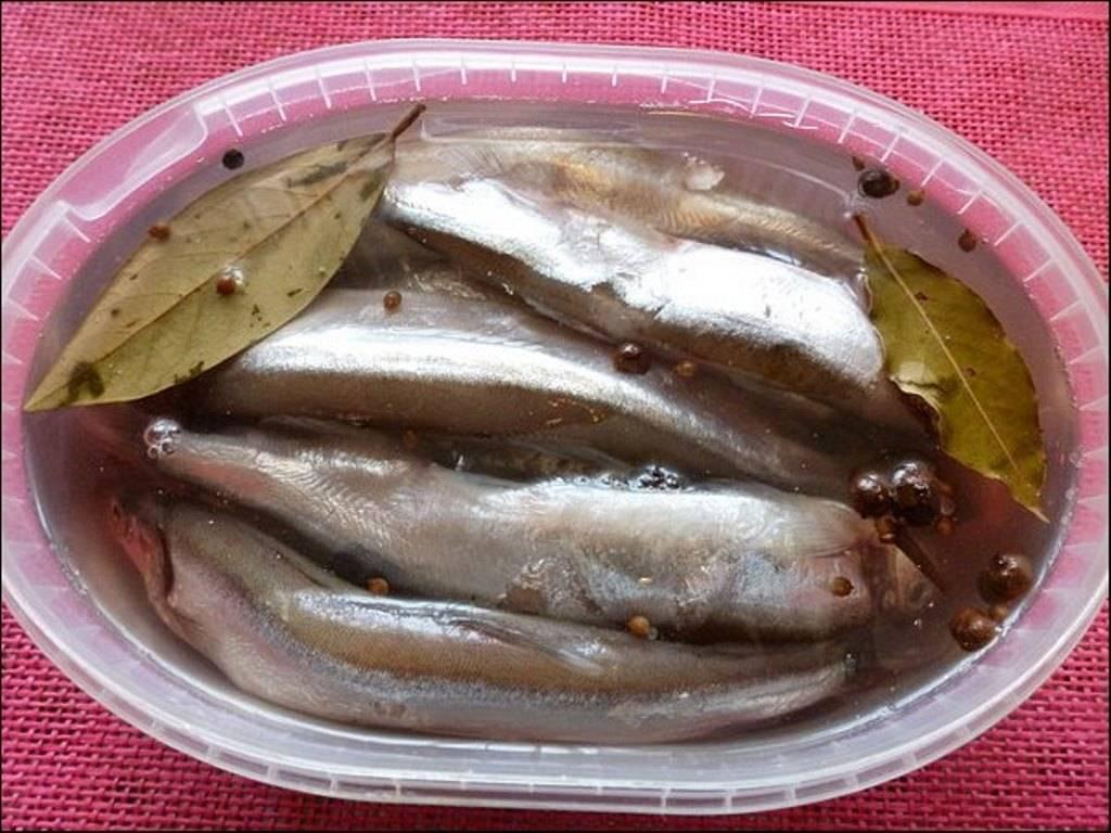 ✅ засолка мелкой речной рыбы в домашних условиях - receptii.ru