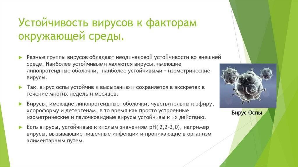 Вирусные и вирусоподобные болезни  семечковых культур   |  аппяпм