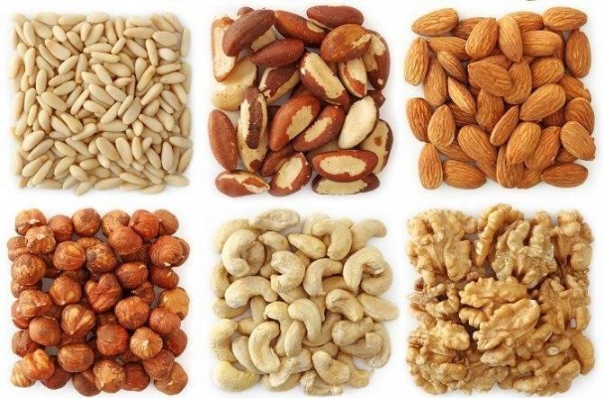 Как орехи действуют на кишечник. запор и орехи: как они связаны