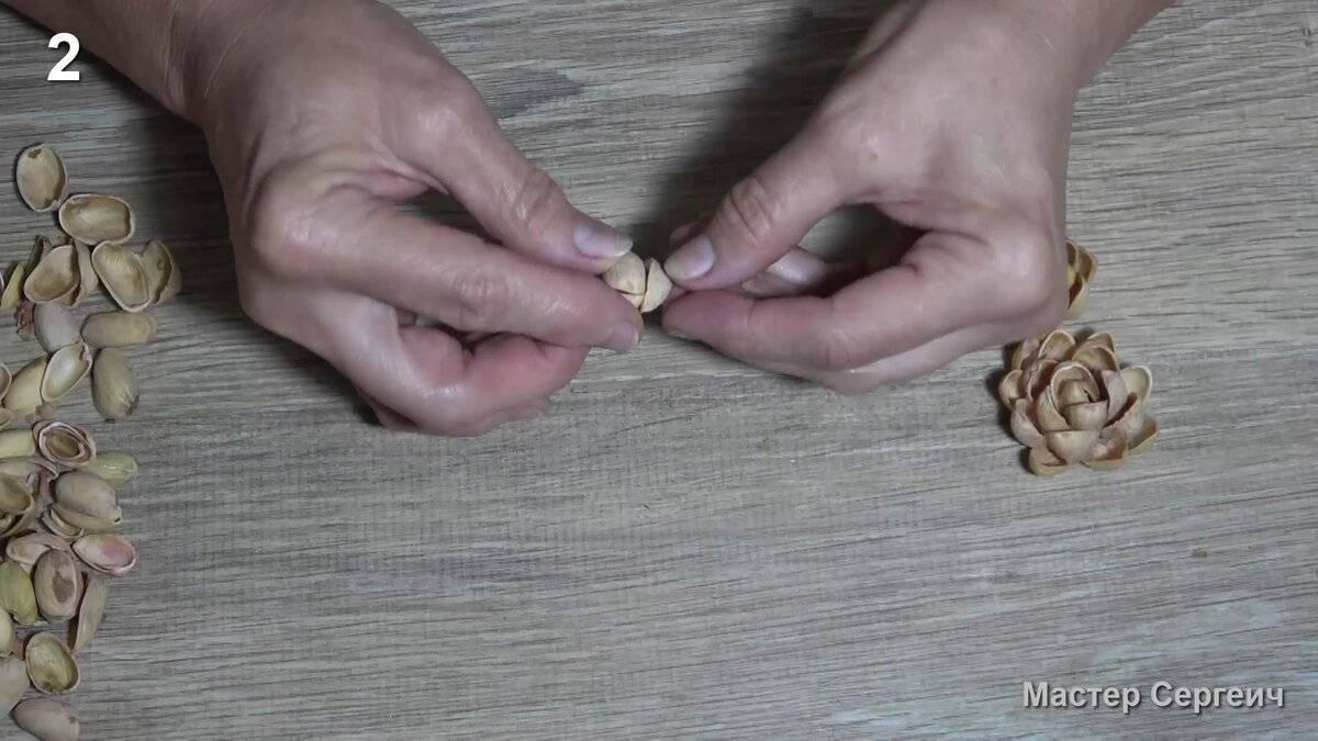 Применение луковой шелухи на огороде бабушкиным методом