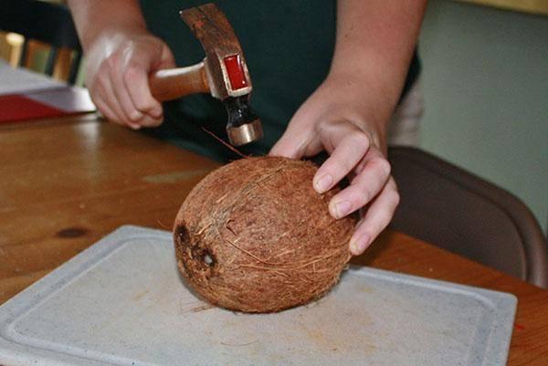 18 полезных свойств кокосового масла. понятие и вред
