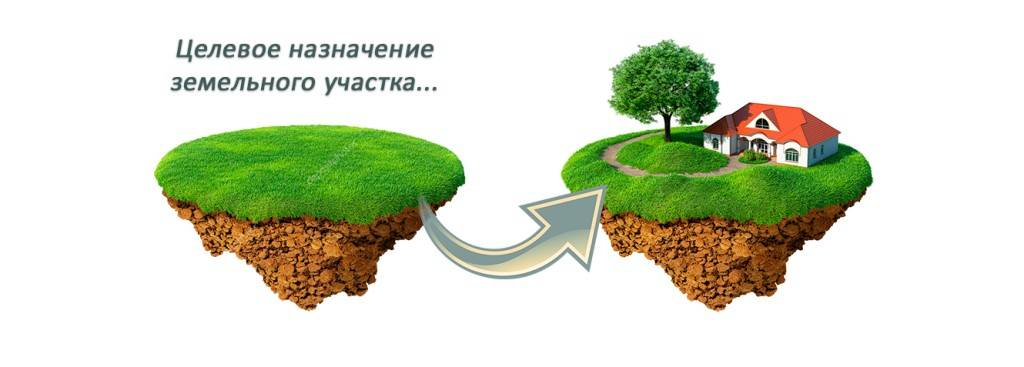 Кто устанавливает категорию земель и разрешенное использование?