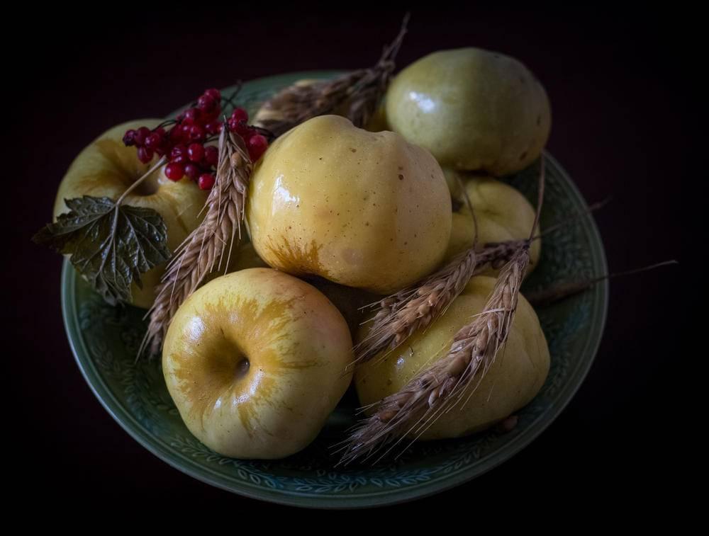 Яблоки моченые на зиму в домашних условиях – 6 рецептов приготовления моченых яблок