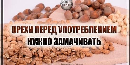 Нужно ли мыть орех макадамия: почему это следует делать, как правильно замочить ядра перед употреблением, а также можно ли их обдавать кипятком?
