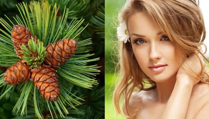 Кедровое масло для лица: состав, применение в косметологии для кожи от морщин, в чистом виде, отзывы