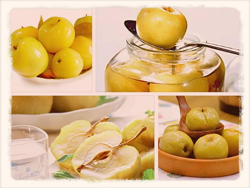 Мочёные яблоки: тонкости и нюансы приготовления в домашних условиях