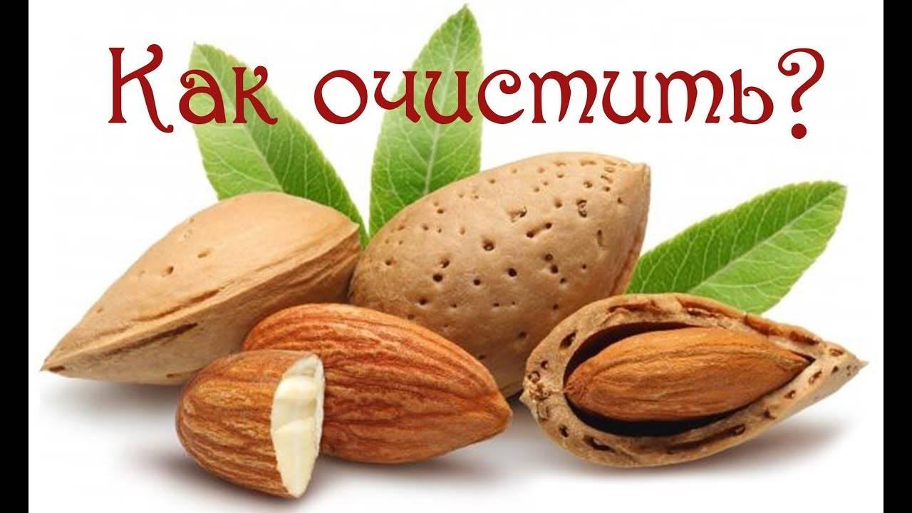 Пошаговые инструкции, как быстро очистить арахис от шелухи и кожуры