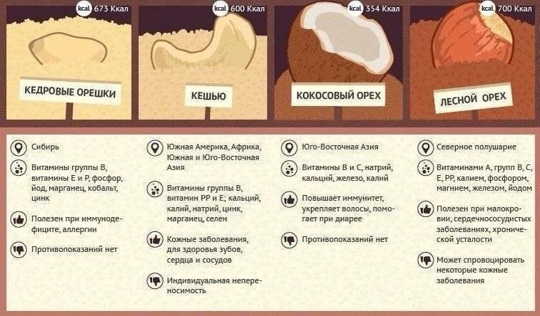 Кладезь витаминов и микроэлементов — орехи. какие и как употреблять при беременности?