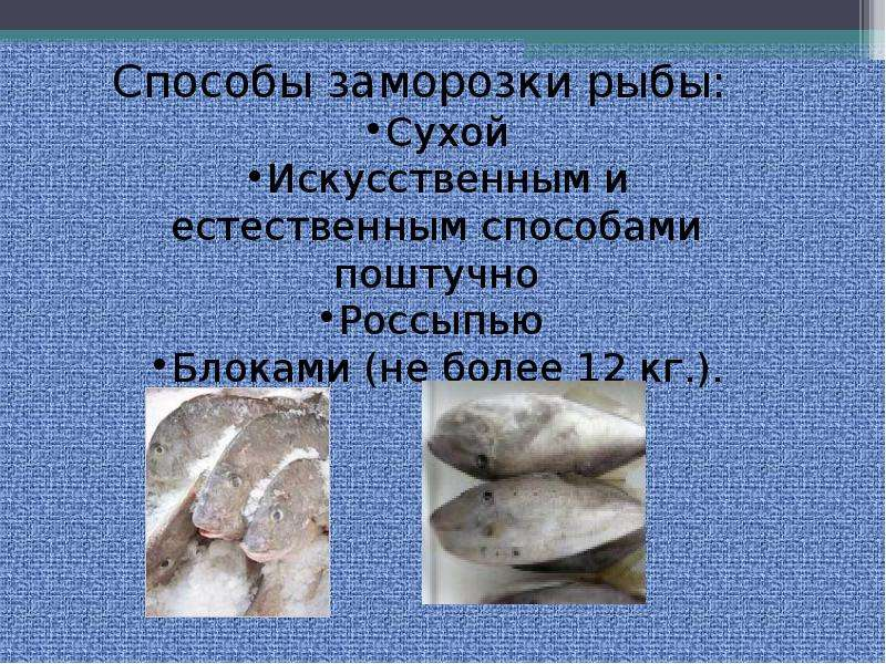 Сафронова т.м. и др. технология комплексной переработки гидробионтов - файл n12.doc