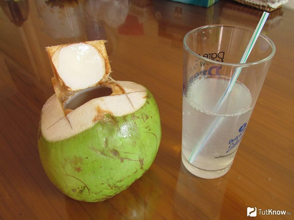 Кокос: как принимать, польза и вред для здоровья, калорийность | здоровье и красота