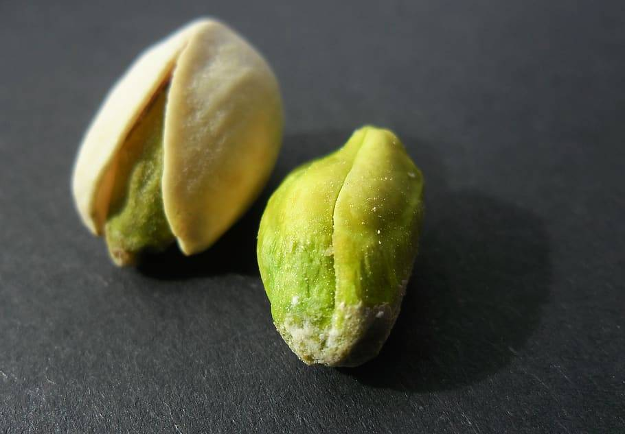 Основные пигменты растений: описание и их роль
