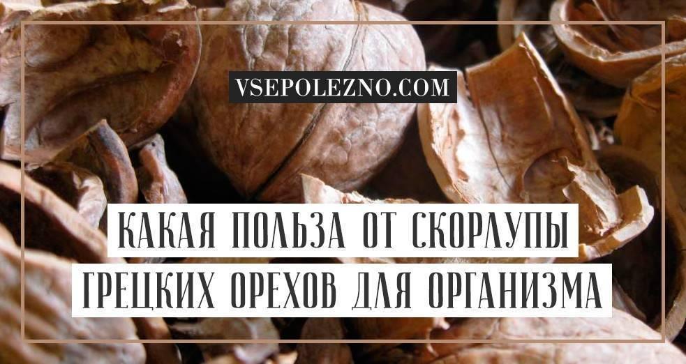 Классические рецепты водки на орехах (грецких и кедровых)
