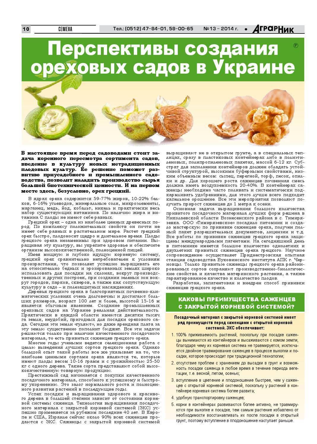 Система защиты плодового сада от вредителей и болезней: средства борьбы с насекомыми и вирусами