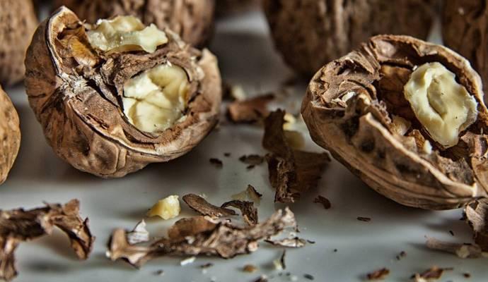 Применение скорлупы грецкого ореха