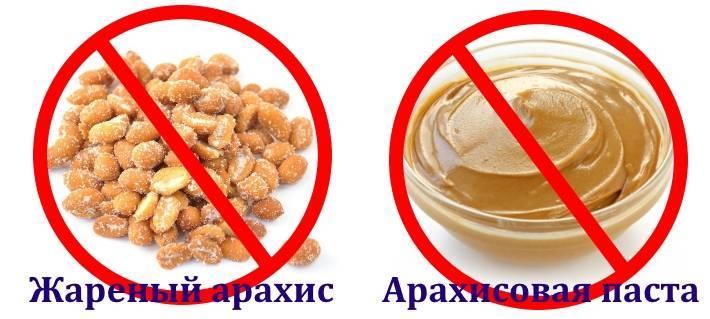 Фисташки при гастрите: можно или нет их есть при заболеваниях желудка и иных недугах, когда употребление запрещено, какие вещества содержат, как выбирать орехи?