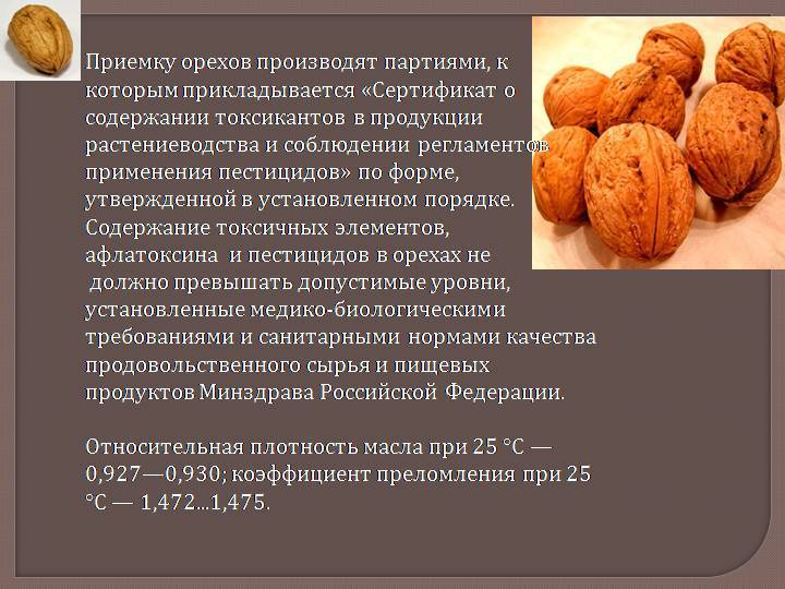 Китайский грецкий орех: польза и вред продукта, а также можно ли есть такие плоды и как отличить их от обычных?