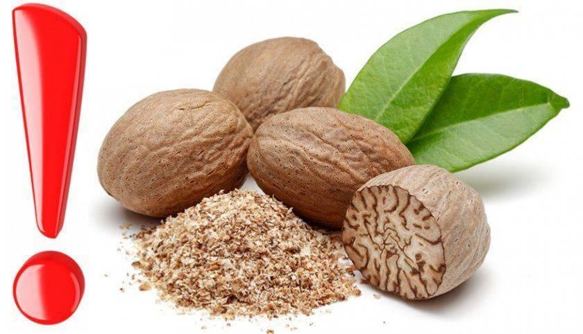 Мускатный орех: здоровая специя или токсичный галлюциноген?