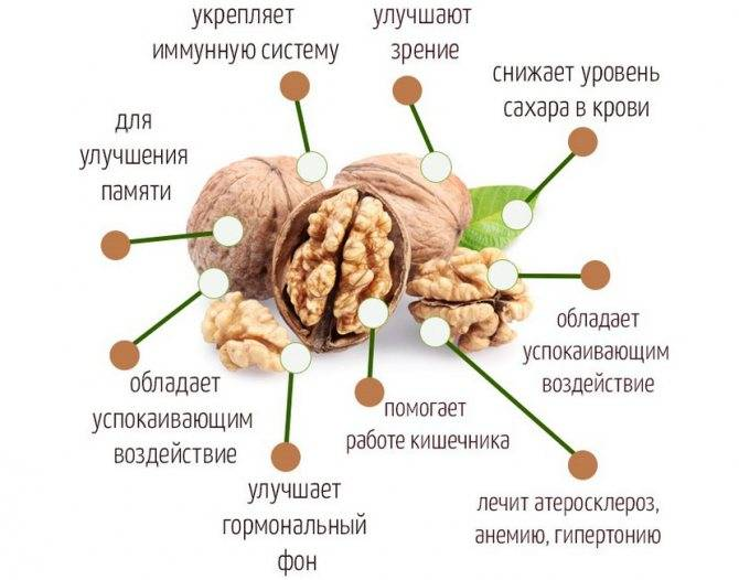 Можно ли есть орехи при панкреатите: польза и вред продукта при болезнях поджелудочной железы, влияние на организм и какие плоды кушать при хроническом воспалении?