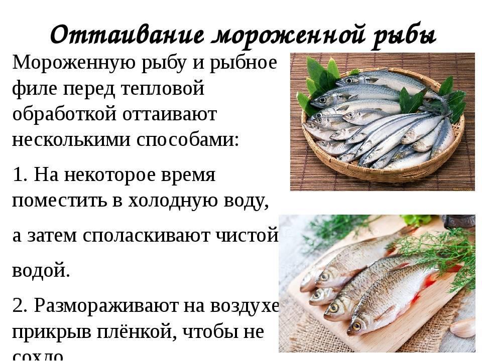 Изменения биохимических свойств молоди атлантического лосося при замораживании изменения биохимических свойств молоди атлантического лосося при замораживании