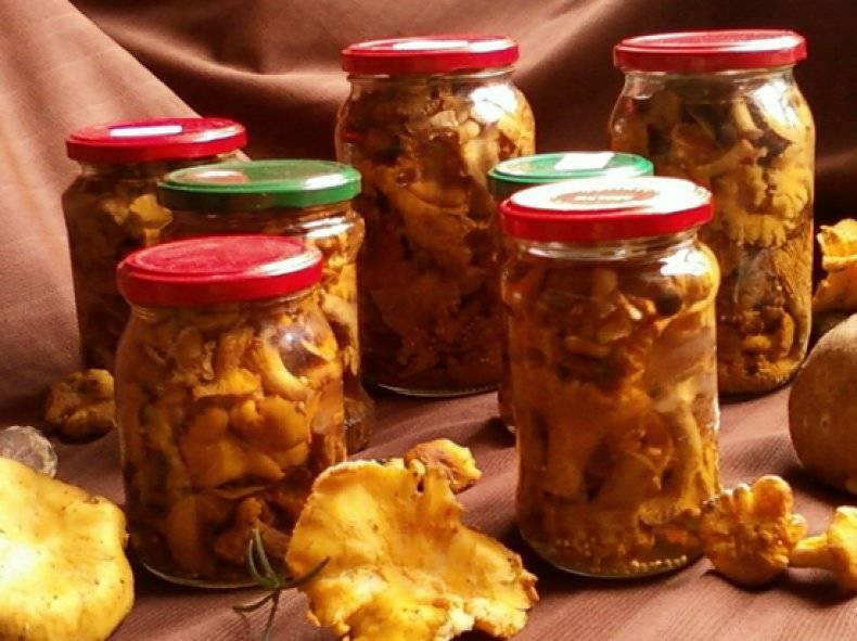 Маринованные белые грибы: 3 рецепта и секреты как замариновать грибы