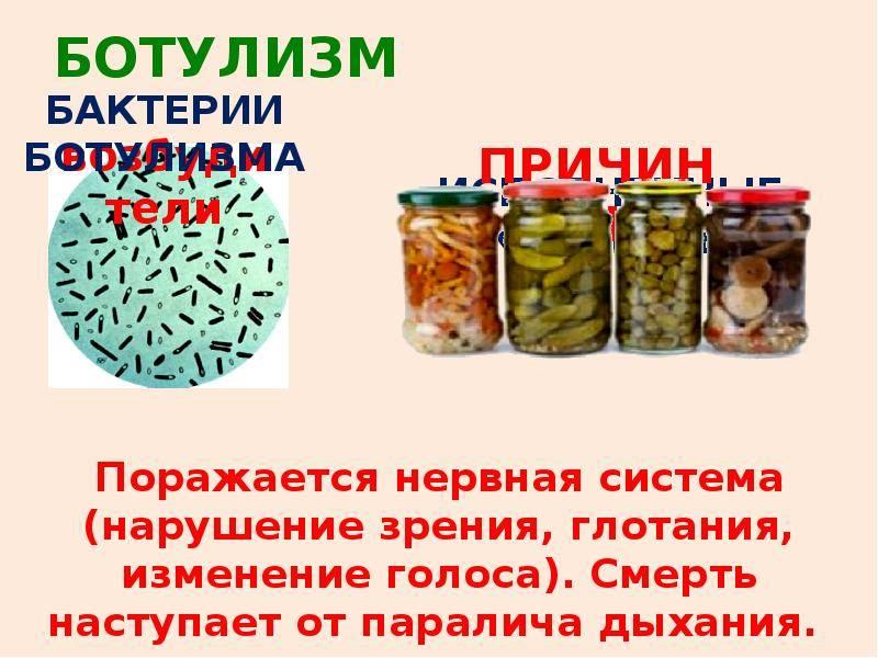 Микробиологический контроль производства консервов
