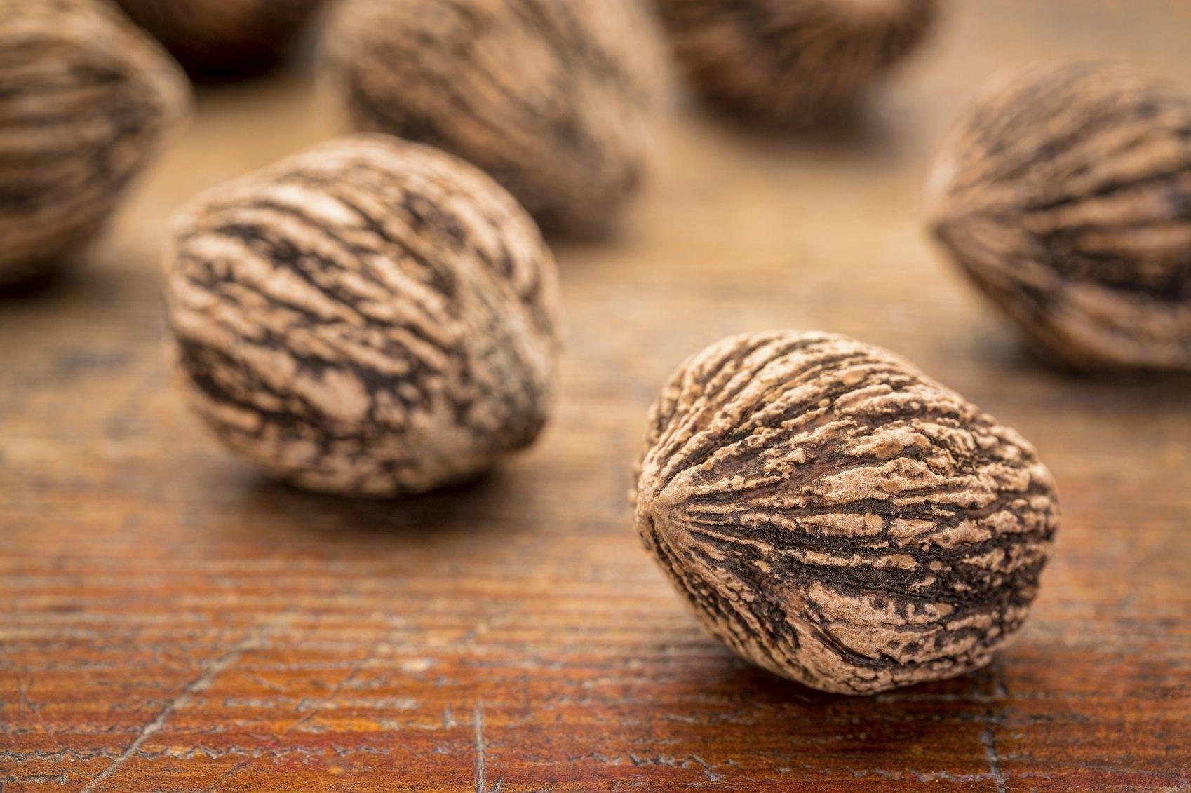 Черный орех: полезные свойства и применение