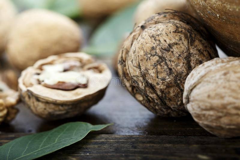 Когда и как обрезать грецкий орех весной, летом, осенью