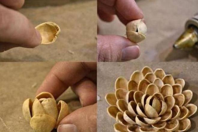 Что можно сделать из скорлупок фисташек своими руками дома