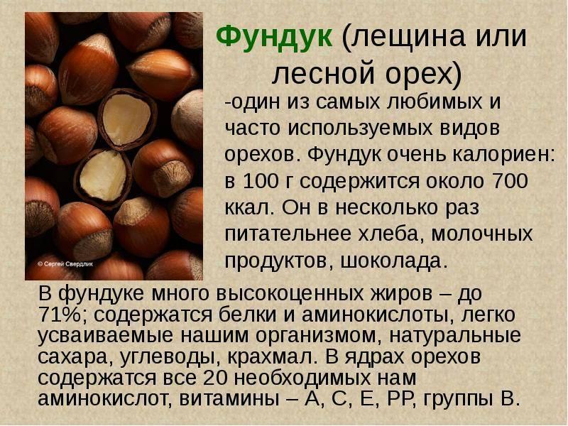 Как вырастить грецкий орех: особенности посадки и ухода, выращивание крупного и как правильно сажать весной, каков должен быть грунт и расстояние между деревьями?