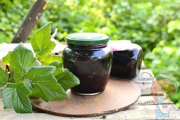 20 отличных рецептов варенья из черной смородины