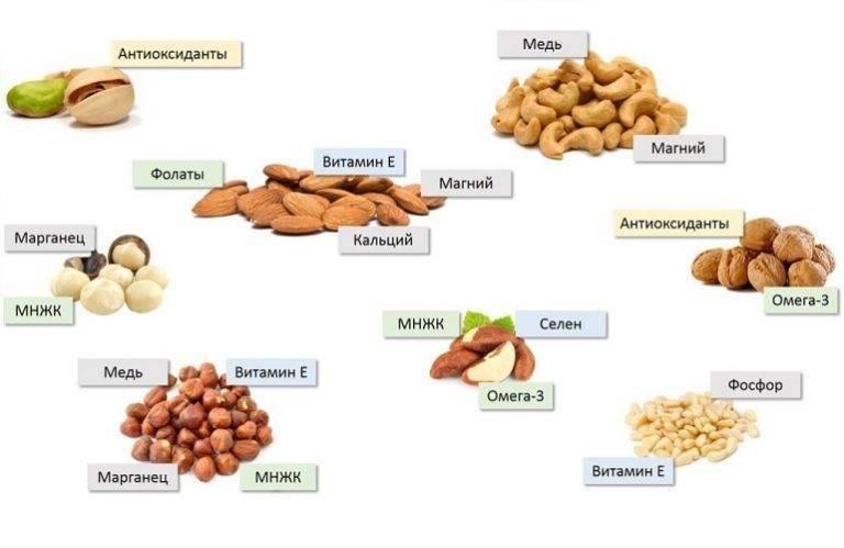 Кедровые орехи: химический состав, калорийность, витамины и микроэлементы. польза и вред кедровых орехов