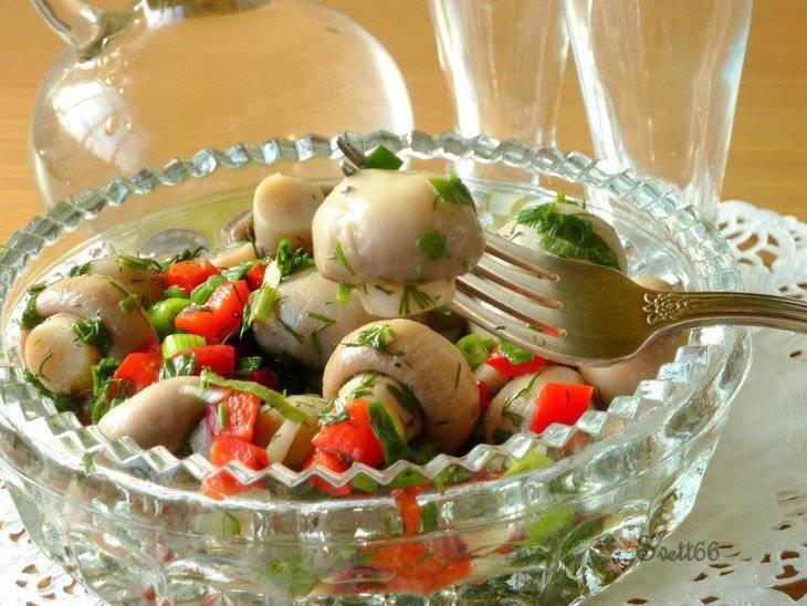 Блюда с консервированными шампиньонами: вкусные рецепты, советы и рекомендации по приготовлению