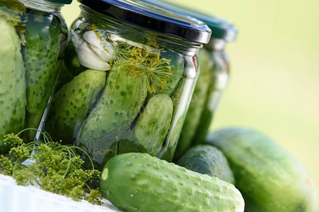 Засолка огурцов в кастрюле: 5 простых рецептов / заготовочки